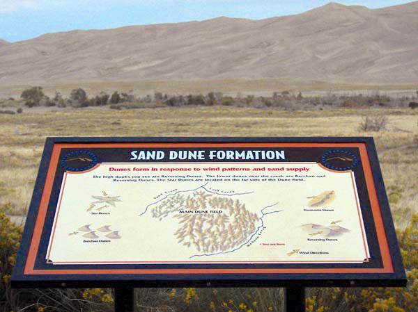 Sand Dune Formation - In Situ At Sand Dunes National Park, Colorado
